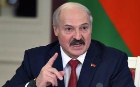 Белоруссия готовит досрочные перевыборы