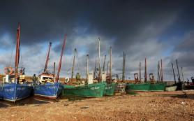 Бразилия проинспектирует фирмы РФ, заинтересованные в поставках рыбы