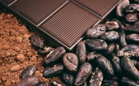 Россия ратифицирует международное соглашение по какао