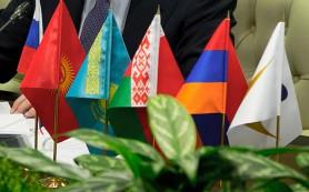 Страны ЕЭАС не поддержали снижение порога беспошлинной интернет-торговли