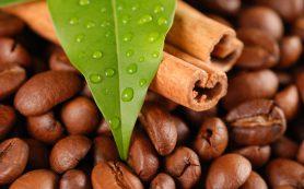Кофе во всем мире: как пьют этот напиток?