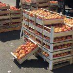Россия разрешит импорт овощей и фруктов из Египта в течение 3-5 дней