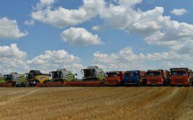 В Саратовской области собрали пять миллионов тонн зерна
