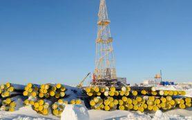 Меры поддержки разработки нефтяных месторождений подготовят до конца года