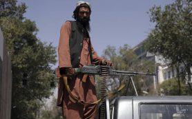 Талибы объявили общую амнистию для правительственных чиновников Афганистана