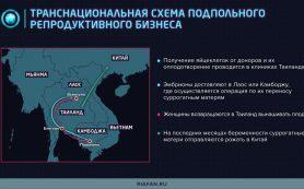 Страны Юго-Восточной Азии планируют закупить «антидроновые чемоданчики» Ростеха